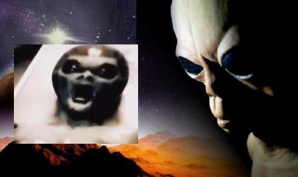 «Брыкающийся гуманоид»: Пентагон «слил» видеозапись из палаты «буйного» пришельца — эксперт