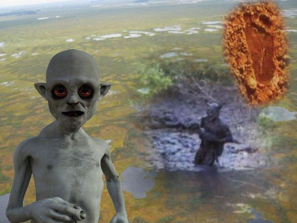 Строят гнёзда: Болотные гоблины с Нибиру появились в Сибири