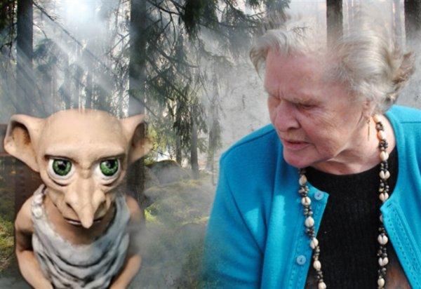Кубанский треугольник опасен: Голодный Добби напал на пенсионерку из-за корзины грибов