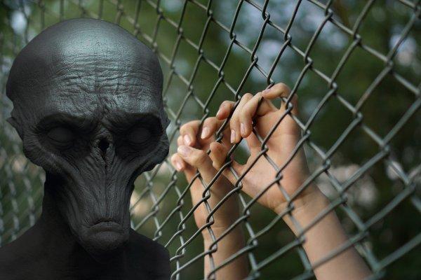 Научная ловушка: Учёные помогают пришельцам истребить человечество — эксперт