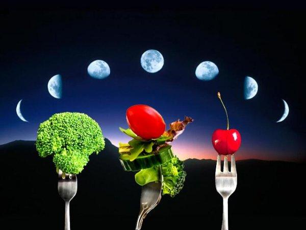 36 часов, чтобы похудеть: Короткая диета на новолуние начнется 27 октября, заявил астролог