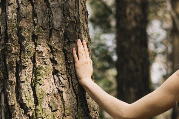 Врата долголетия откроются 6 ноября – Ведунья советует прочитать заговор долгой жизни