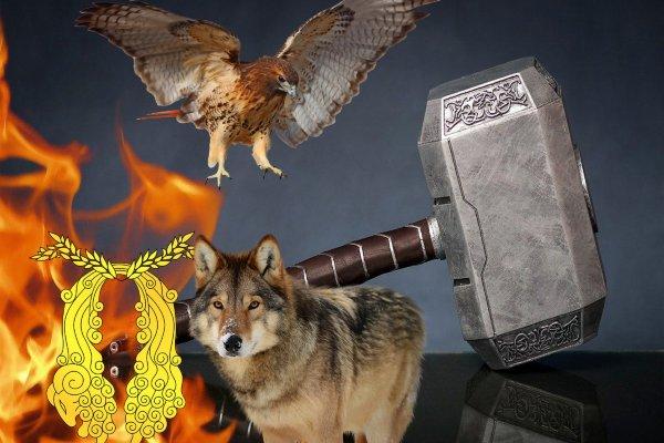 Лучшая защита – нападение: Какой талисман принесёт успех и защитит Овна