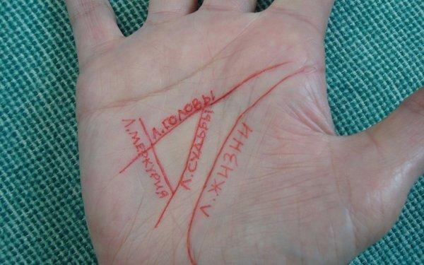Денежный треугольник: Какие линии на ладони говорят о богатстве?