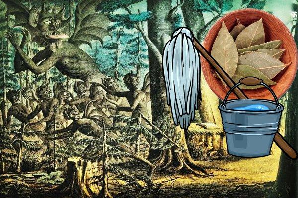 Прогнать бесов из дома: Вымыть пол «лаврушкой» советуют экстрасенсы