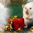 Рассыпанная соль в Новом году принесёт счастье в дом