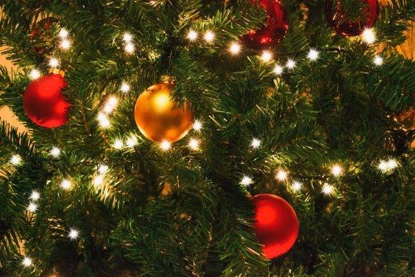 Ёлка на удачу: Как знакам зодиака украсить дерево на Новый год