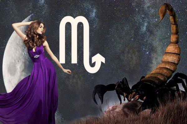 Мисс Совершенство за 7 дней: Луна в Скорпионе поможет влезть в платье к Новому году