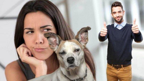 Собака никогда не врет: Животное расскажет об изменах мужа