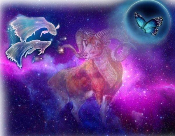 Купидон гороскопов не читает: Кто вскружит голову Зодиакам Воды в феврале