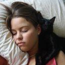 «Охраняют здоровье». Почему коты спят у головы хозяина — эзотерик