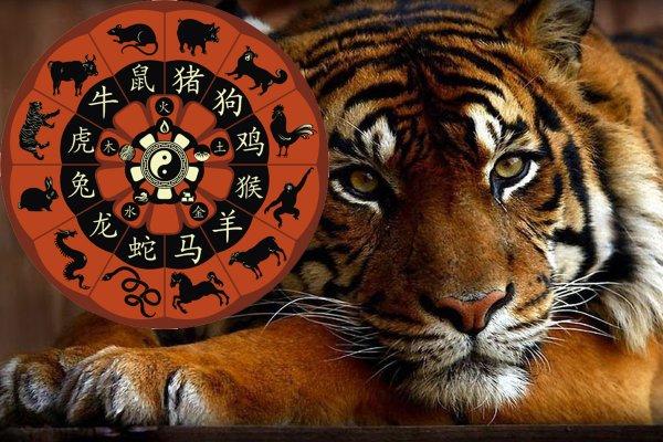 Месяц Земляного Тигра: Китайский гороскоп раскрыл тайны февраля