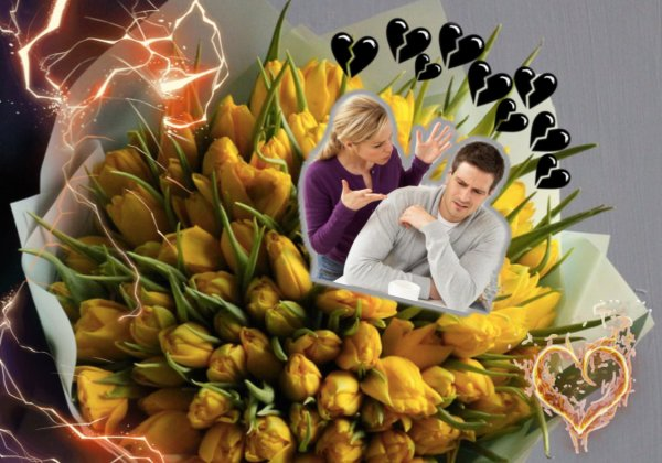 «Жёлтые тюльпаны — вестники разлуки»: Цветы которые приведут к расставанию