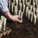 Клешни в земле, хвост в шоколаде: Скорпионам придется буквально выкапывать удачу 26 февраля