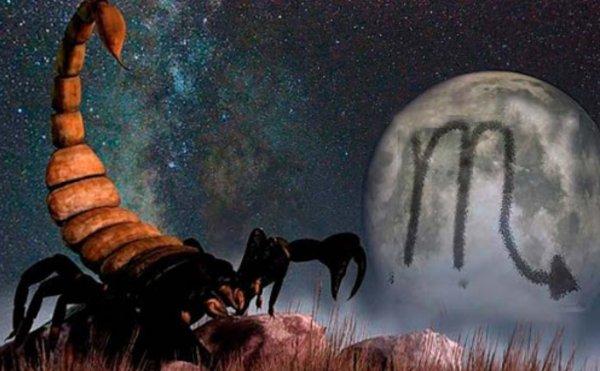 Объявляется балдёж: Как Скорпиону насладиться началом марта