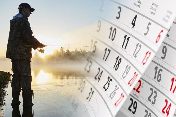 Разматываем удочки— Удачные дни для рыбалки с9 по15февраля