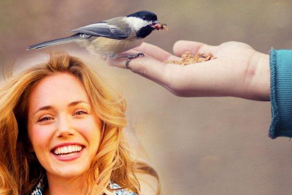 Счастье завтрашнего дня— Зачем кормить птиц перед полнолунием