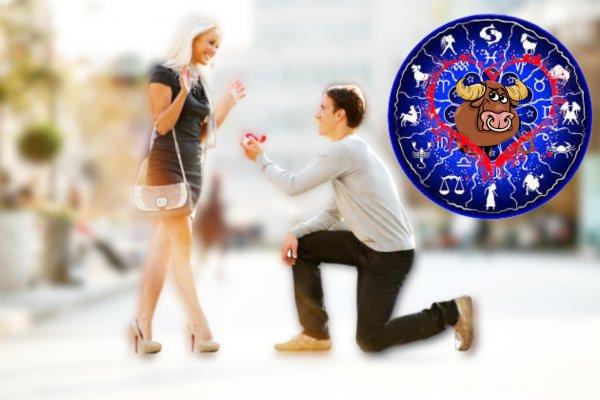 Давай поженимся: Тельцы-мужчины ищут ярких и бесстрашных дам