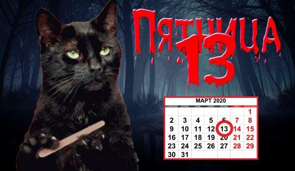 Чёрный кот — удача так ипрёт: Как животное повлияет на пятницу 13