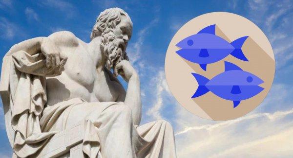 «Тормоз» по жизни: Почему Рыбам к лицу медлительность