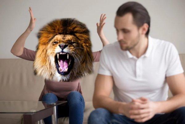 Барахтаясь в гневе: До чего агрессия доведёт Львов 2 апреля