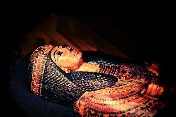 Ученые раскрыли состав «черной слизи», покрывающей гробницы мумий Древнего Египта