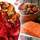 Как холестерин может быть полезен для сердца и защитит от ишемии