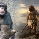 Британские учёные нашли сходство речи человека и приматов