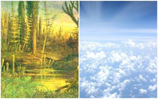 Массовое вымирание 360 млн лет назад произошло из-за истощения озонового слоя