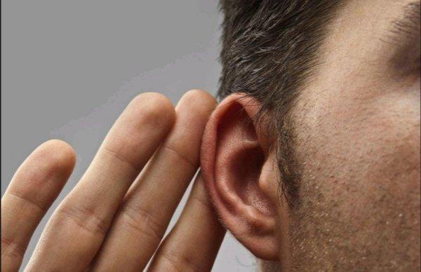 3D-биопринтер напечатал искусственное ухо с живыми клетками сквозь кожу мыши