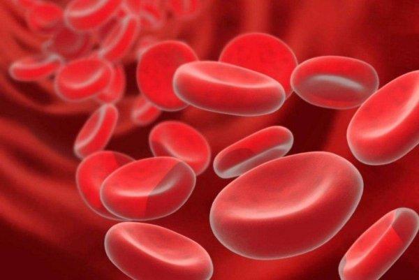 Учёные: Разбавленная плазма крови способна омолодить организм