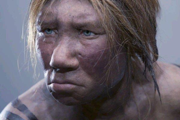 Ученые расшифровали геном неандерталки из Алтая по фрагменту кости
